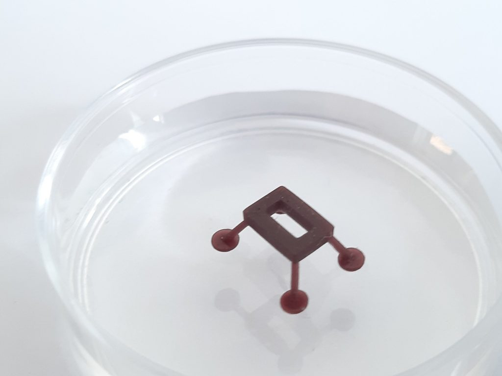 A laser-controlled microrobot floating on the water's surface. Credit: Franco N. Piñan Basualdo